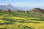 Territorio di Collesano nel Parco naturale regionale delle Madonie